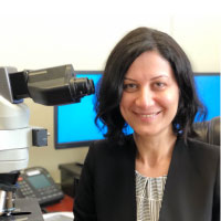 Dr Mahboudeh Rahmani