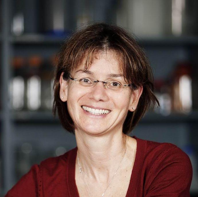 Dr Harriet Feilotter