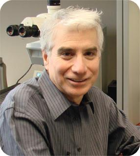 Dr Bayardo Perez-Ordonez